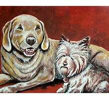 Sammy and Belle Photographic Print