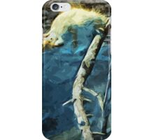 American Red Squirrel Watching Abstract Impressionism iPhone Case/Skin