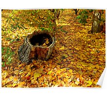 When It Was Autumn Poster