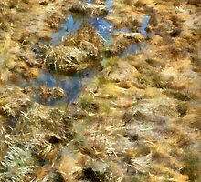 Saltmarsh Thaw by RC deWinter