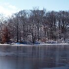 Winter at the Pond by nastruck