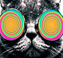 All Hail Hypno Cat!  Sticker