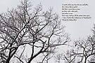 Snow In The Woods - Lewis Carroll Quotation by MotherNature