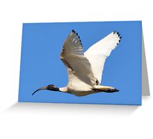 Flying 2 Greeting Card