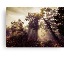 Mysterious Sun Rays Shining Down Canvas Print