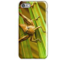 Hang on there 01 iPhone Case/Skin