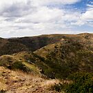 Mount Howitt Panorama by Will Hore-Lacy