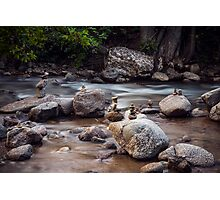 Boulder Creek Balancing Act Photographic Print