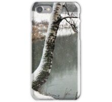 Lonely Birch iPhone Case/Skin