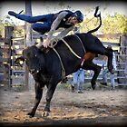 Rodeo, Practise Day by Barbara  Jean
