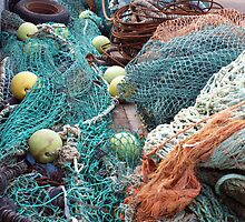 Nets, Nets and More Nets by kalaryder