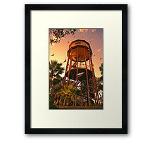 Golden  Aerie Framed Print