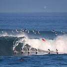 The Art Of Surfing In Hawaii 27 by Alex Preiss