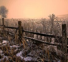 Old But Still Standing ~ Snow ~ by Charles & Patricia   Harkins ~ Picture Oregon