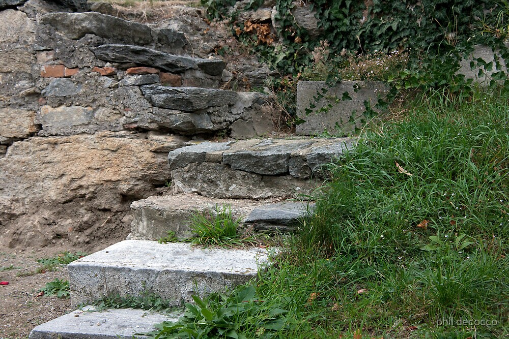 Steps In Stone by phil decocco
