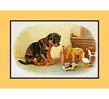 Cute Victorian puppy, wooden toys Photographic Print