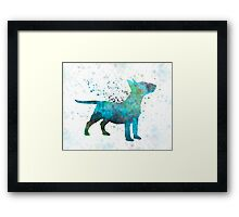 Miniature Bull Terrier in watercolor Framed Print