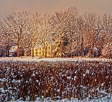 Snow Covered Farm Field by Debra Fedchin