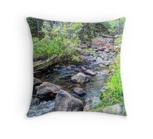 Crossover at Hardscrabble Creek Throw Pillow