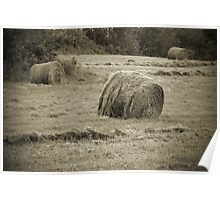 Pastoral in B&W Poster