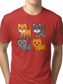 Grey & Ginger Cats Tri-blend T-Shirt