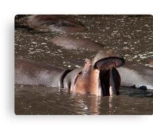 Cool, But Boring Canvas Print