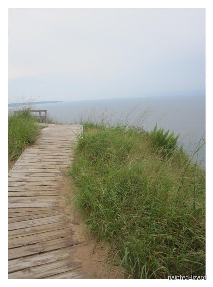 Lake Michigan  by Elizabeth Aubuchon