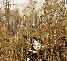 Abandoned motorcyle by AimeeRay