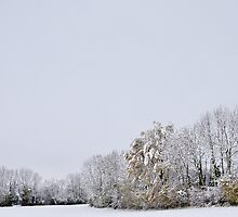 A white day after the snow by Patrick Morand