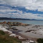 Bicheno, East Coast, Tasmania  by Eunice Atkins