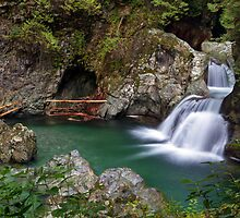 Twin Falls in Lynn Canyon Park by Michael Russell