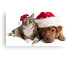 Cat Dog Christmas Hat Canvas Print