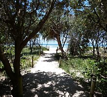 Path to the Beach Paradise. by FangFeatures