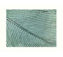 Dragonworld: Feather Art Print