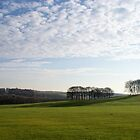Low Winter Sun Over Temple Newsam Leeds by Jazzdenski