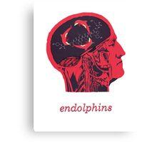 Endolphins Canvas Print