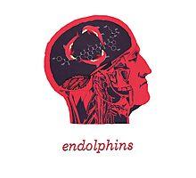 Endolphins Photographic Print