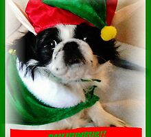 Bah Humbug! by Eileen Brymer