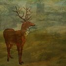Looking for Landseer by Sarah Vernon