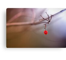 Red and remaining.... Canvas Print