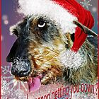 ..........another special xmas card. by Bine
