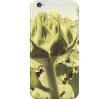 Small Actors iPhone Case/Skin