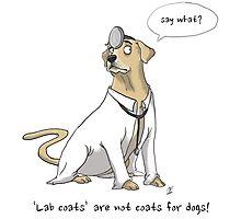 Lab Coats and Labradors Photographic Print