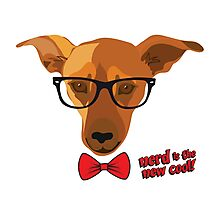 Hipster dog - Nerd is the new cool! Photographic Print