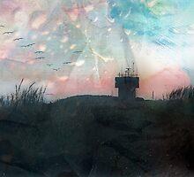 Art Aurora   by Susan Werby