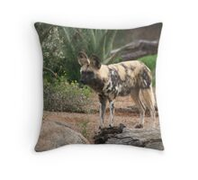 Staring Competition Throw Pillow