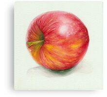 Side of An Apple Canvas Print