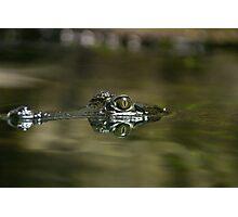 Crocodile reflection Photographic Print