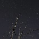 Geminids 01 by Matt Fricker Photography