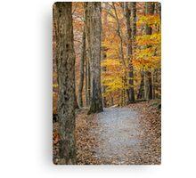 A Fall Walk Canvas Print